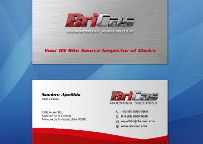 tarjetas de presentacion_bricassi