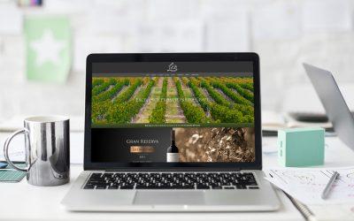 Diseño de página web para viñedos Don Leo