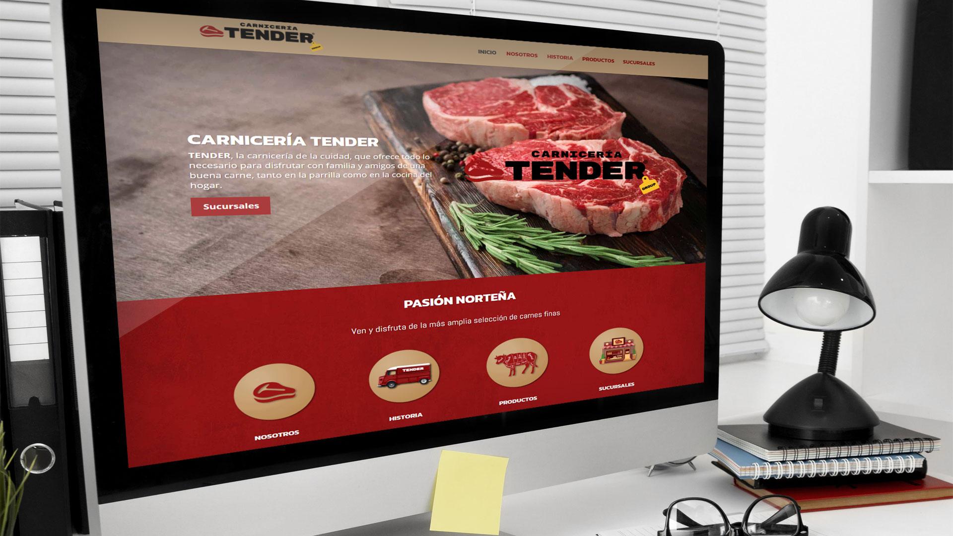 diseño de página web responsiva TENDER